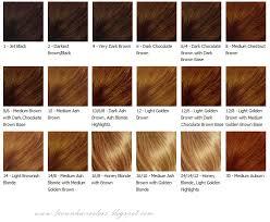 light golden brown hair color chart brown hair color chart brown hair colors hair colors brown hair