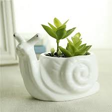 amazon succulents gelive snail white ceramic succulent planter flower pot w https