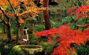 imagenes de jardines japones decoraciones de jardin jardines japoneses