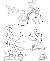 real pony coloring pages horses coloring pages