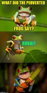 Frog Memes - frog puns imgflip