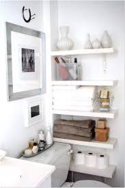 Build Bathroom Cabinet Best Of Diy Bathroom Wall Cabinet Indusperformance Com