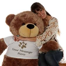 engraved teddy bears personalized teddy t shirts dontstopgear bed9f76b9c29