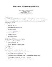 resume summary exles resume summary sles for system administrator objective exles