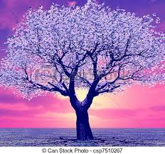 stock illustrations of beautiful tree in the sunset csp7510267