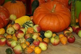 free images apple fruit food produce vegetable pumpkin
