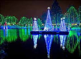Zoo Lights Phoenix Light Up Your Holidays With A Celebration At The Zoo