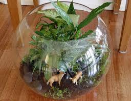 extra large fish bowl terrarium u0027oh deer u0027 from chill designs