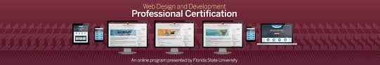 design home page online web design and development professional certification florida
