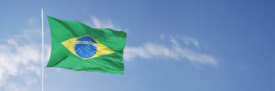 The Flag Of Brazil Living Antibiotic Effective Against Salmonella The University Of