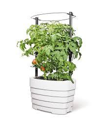 gardener u0027s revolution u0027 classic tomato garden kit gardeners com