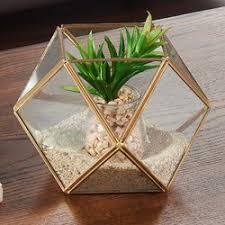 danyab glass terrarium u0026 reviews wayfair
