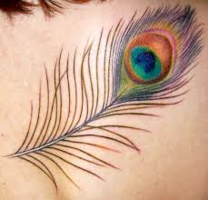 24 best peacock tattoos images on pinterest peacock feathers