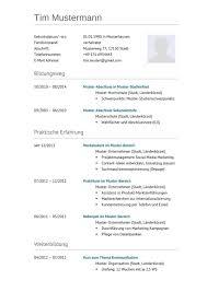 Cv Vorlage Schweiz Word Resume Word Vorlage Professional Resumes Exle