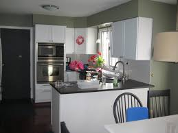 any green kitchen photos or paint suggestions
