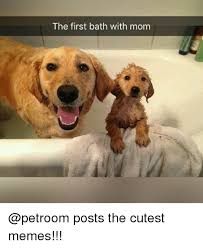 Cutest Memes - the first bath with mom posts the cutest memes meme on me me