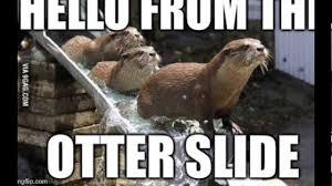 Otter Memes - otter memes youtube