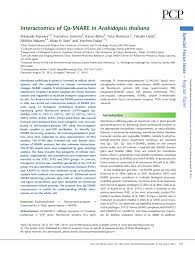 interactomics of qa snare in arabidopsis thaliana pdf download