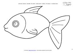 fish color picture fish