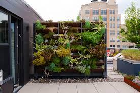 rooftop garden design rooftop landscaping unthinkable rooftop garden design dansupport