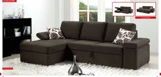 Sectional Pull Out Sofa Living Room Sectional Pull Out Couches 15 Sectional Pull Out