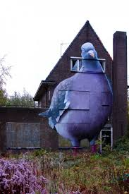 35 best homing pigeons images on pinterest homing pigeons