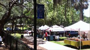 maitland farmers market at lake lily park youtube