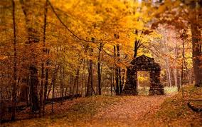 imagenes de otoño para fondo de escritorio 30 fondos de pantalla para empezar el otoño