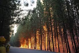 smoke damage u2013 emergency restoration los angeles for fire and