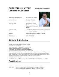 Sample Resume Of Chef by Cv Leonardo Concezzi 2012