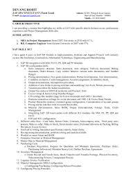 Sap Sd Resume Sample by Sap Sd Consultant Resume Sample Free Resume Example And Writing
