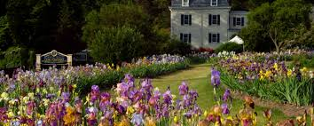 presby memorial iris gardens a rainbow on the hill in upper
