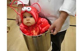Halloween Costume Babies Slings Carriers Baby Halloween Costumes Rookie Moms