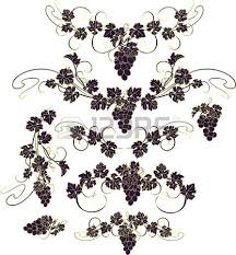 14 790 grape vine stock vector illustration and royalty free grape