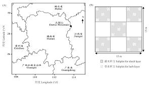 Canap茅 2m 湖南大围山杜鹃灌丛的群落组成及结构特征