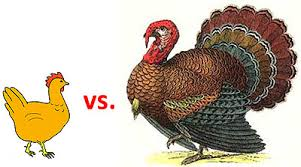 chicken vs turkey is an unfair fight jones