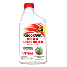 shop knockout concentrate 32 fl oz weed and grass killer at lowes com