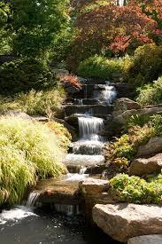 Ny Botanical Garden Membership Waterfall The New York Botanical Garden Office Photo Glassdoor