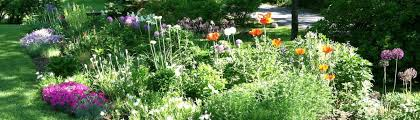 Garden Of Ideas Ridgefield Ct Abbie S Garden Design Ridgefield Ct Us