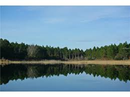 7506 lake hancock blvd winter garden overlook at hamlin o5514112