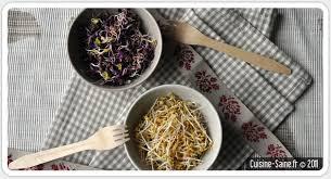 cuisine saine fr les graines germées cuisine saine sans gluten sans lait