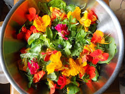 Salad With Edible Flowers - garden salad with edible flowers food with presence