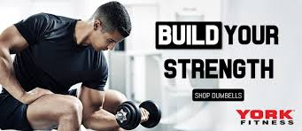 york fitness official uk website the strongest name in fitness