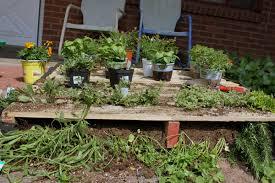 Diy Vertical Pallet Garden - diy inspiration the vertical herb garden u2013 to the bones