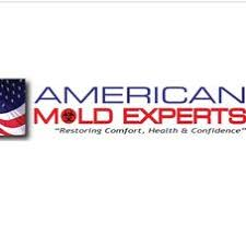 mold experts mold removal company avon in projects