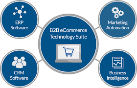 Magento B2b E Commerce Platform B2c E Commerce What Are The Reasons For Magento For B2b Ecommerce Solutions