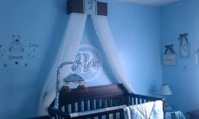 Crib Net Canopy by Blue Crib Canopy Baby Crib Design Inspiration