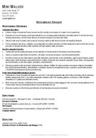 An Example Of A Good Resume by Example Of A Good Resume Format An Example Of A Good Resume