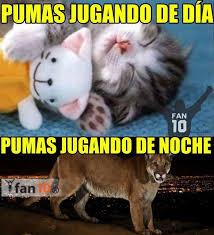 Memes De Pumas Vs America - 18 best pumas images on pinterest pumas sports and adidas