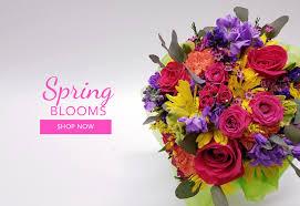 albuquerque florist albuquerque flower delivery flower delivery by flowers by zach low